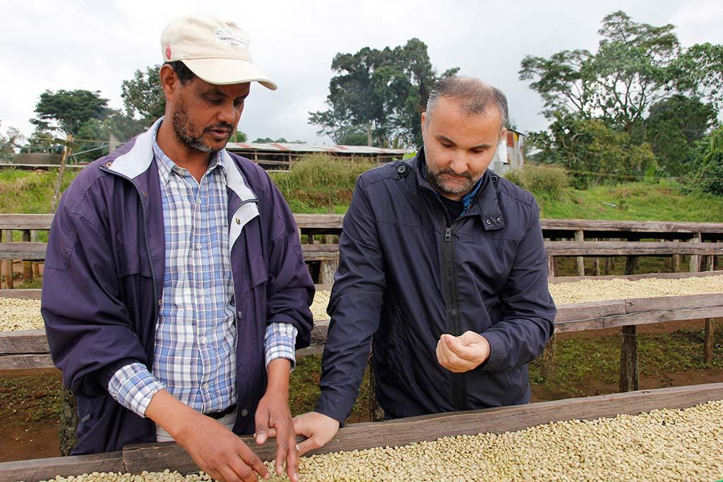 coffeelab-ethiopia-stelios