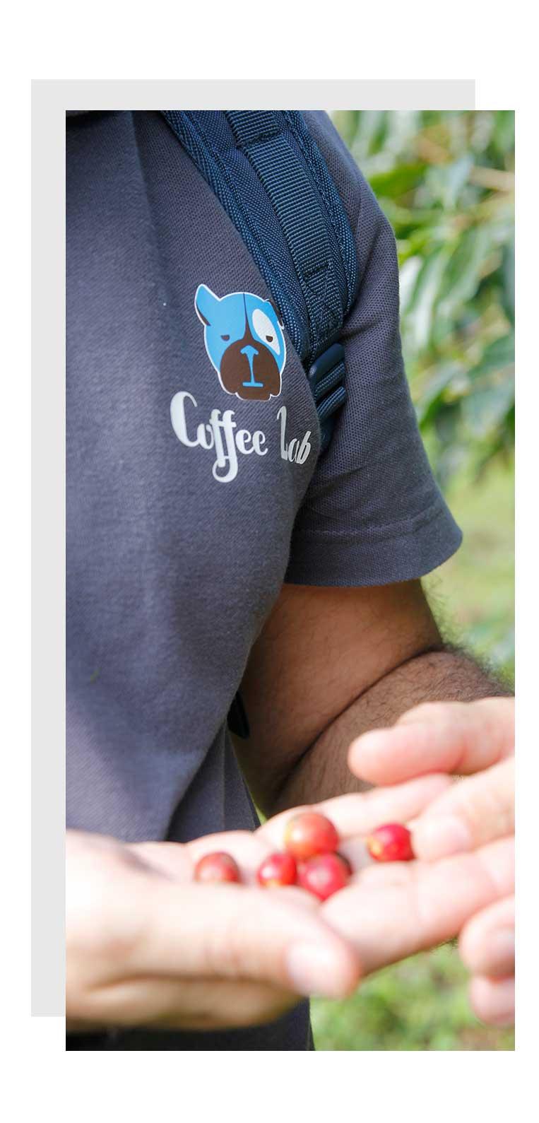 coffee-beans Coffeelab Στέλιος Ρουμελιώτης