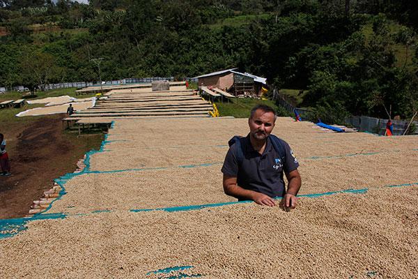 Αιθιοπία καφές